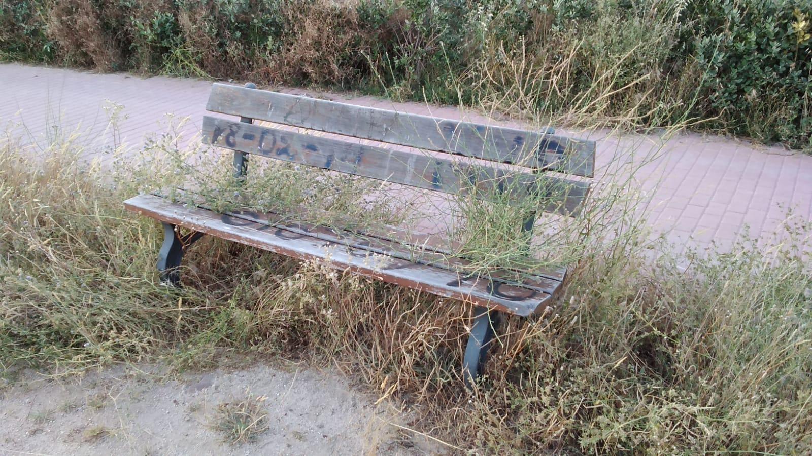 Podemos Getafe pide revisar el mantenimiento del arbolado del Parque de la Alhóndiga Sector II