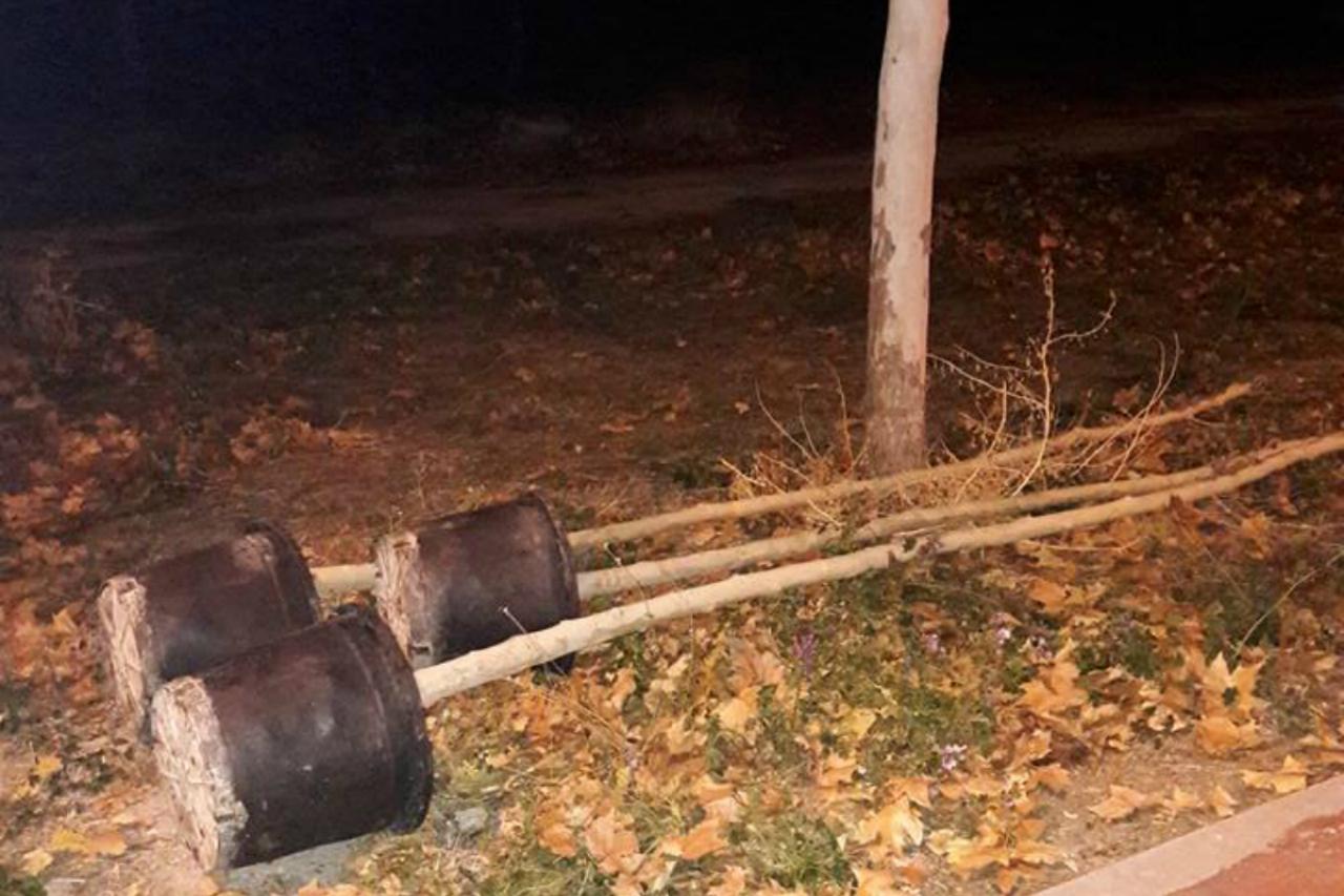 """""""Dejan secar los árboles y vuelven a plantar nuevos cada año"""", denuncian los vecinos de Perales del Río"""
