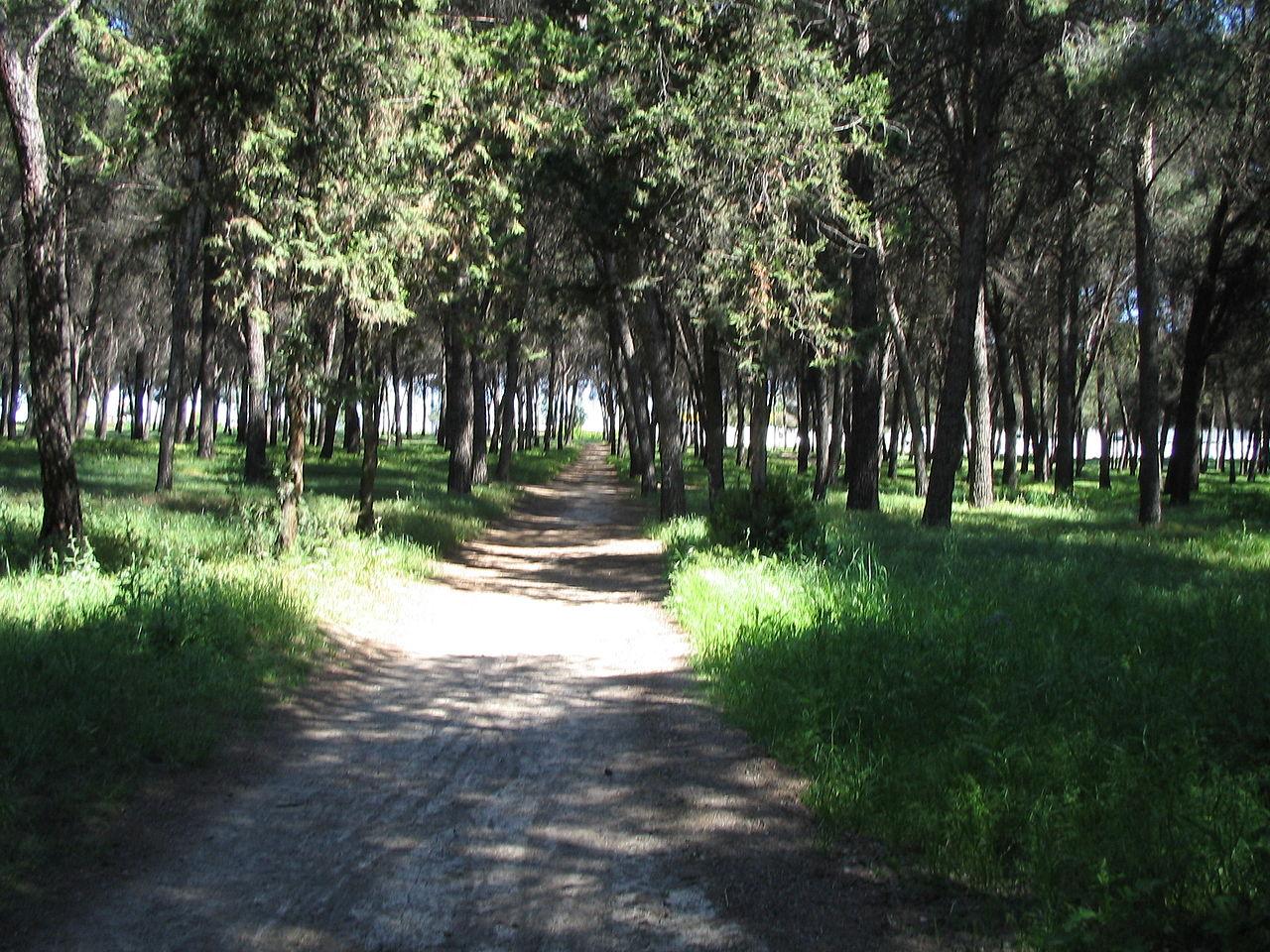 Podemos Getafe pide ampliar el horario de acceso al Cerro de los Ángeles en verano hasta las 23h